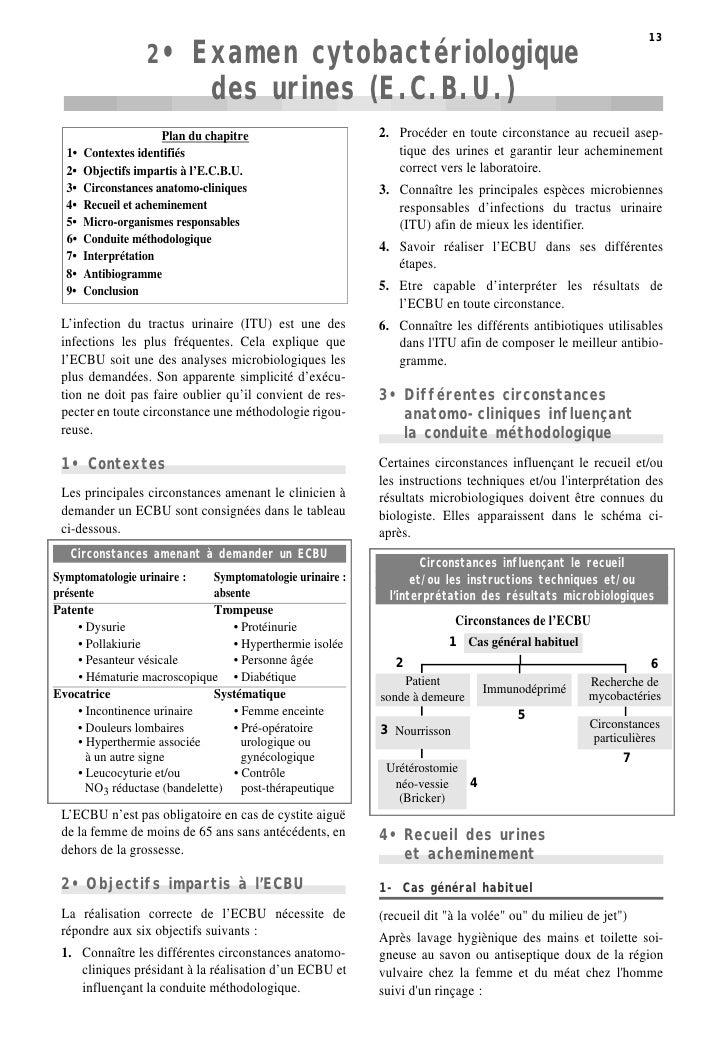 2•       Examen cytobactériologique  13                                                                                   ...