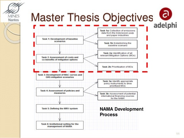 Master thesis objectives