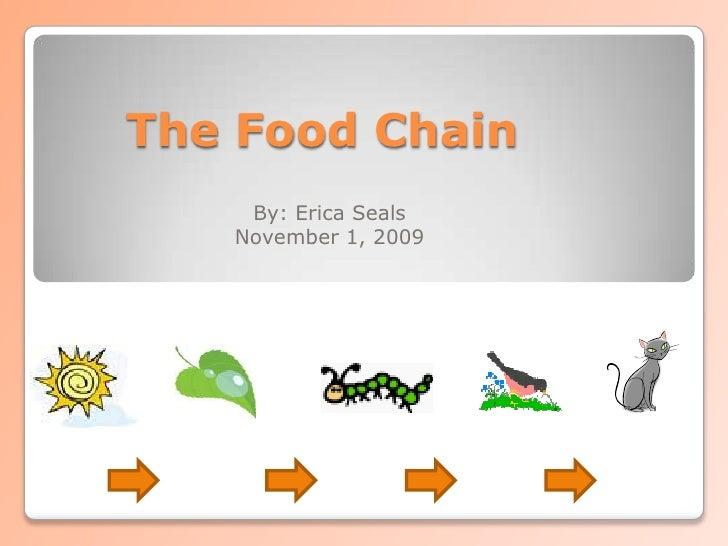 essay on food web