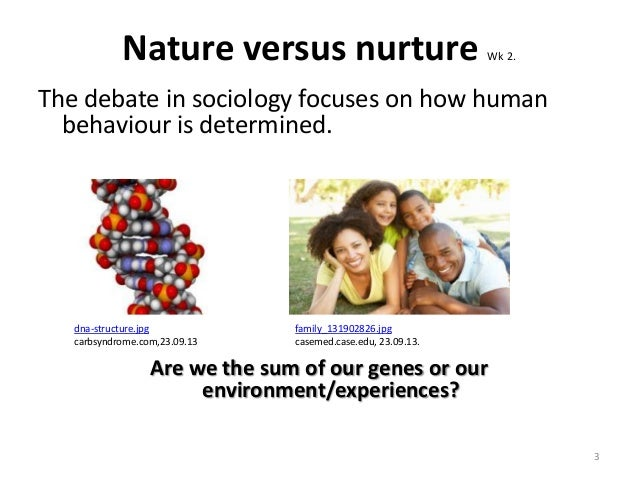 nature nurture debate 3 essay (results page 3) view and download nature vs nurture essays examples also discover topics, titles, outlines, thesis statements, and conclusions for your nature vs.