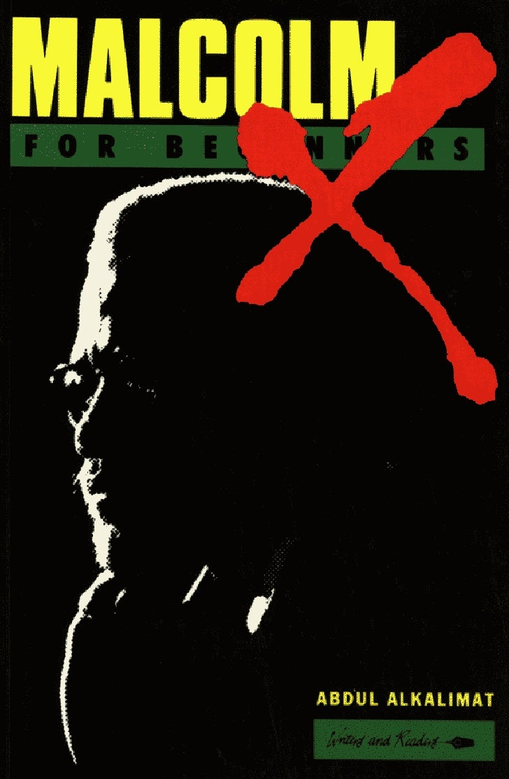 Malcolm X Study Guide-Writers and Readers Edition (For Beginners), by Dr. Abdul Alkalimat