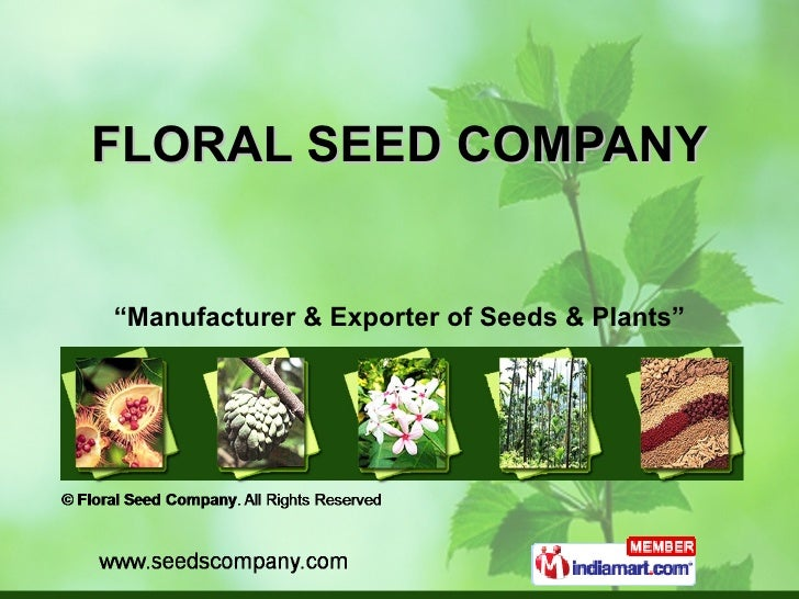 """FLORAL SEED COMPANY """" Manufacturer & Exporter of Seeds & Plants"""""""