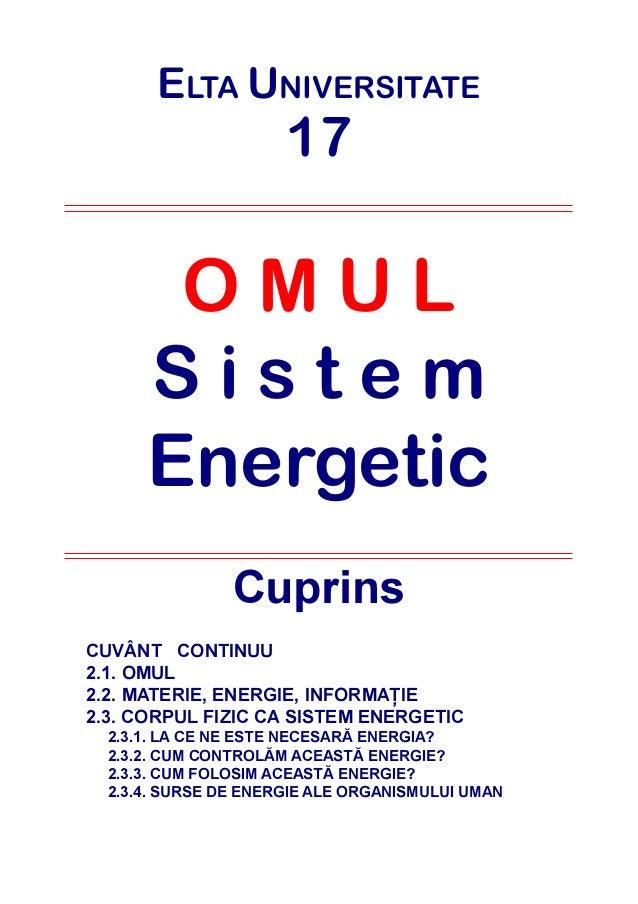 39970180 omul-sistem-energetic