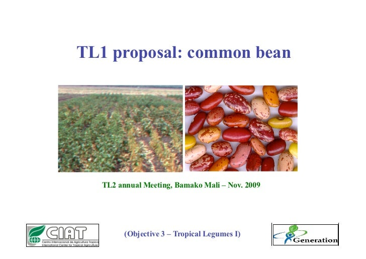 TL1 proposal: common bean       TL2 annual Meeting, Bamako Mali – Nov. 2009             (Objective 3 – Tropical Legumes I)