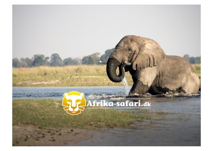 Afrika Safari.dk – Hvad skal der til for at sælge et nicheprodukt på nettet? v. Paul Cristen Bredahl, marketingchef og medejer af  Afrika-safari.dk