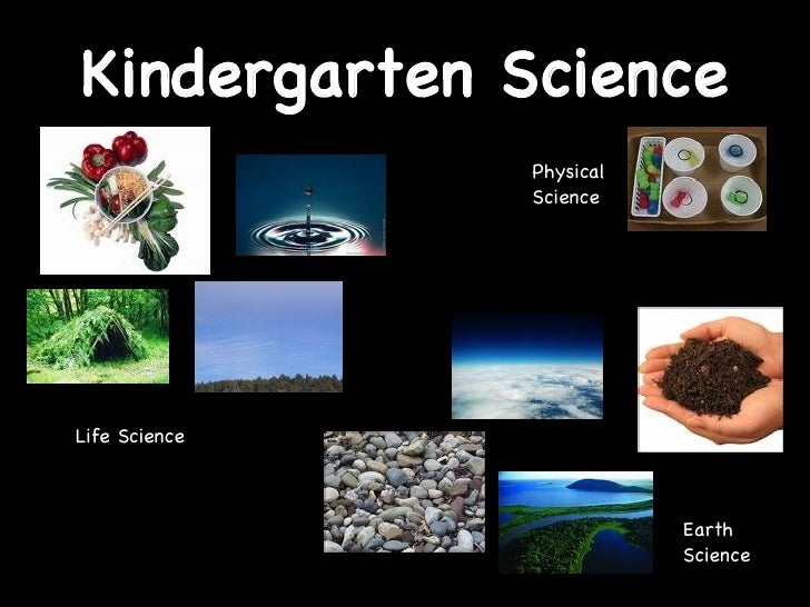 Kindergarten Science Life Science Earth Science Physical Science