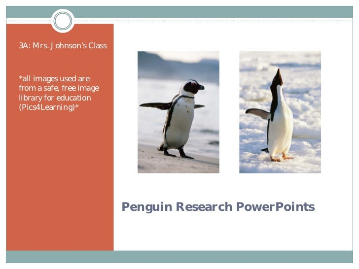 3A: Penguin Research