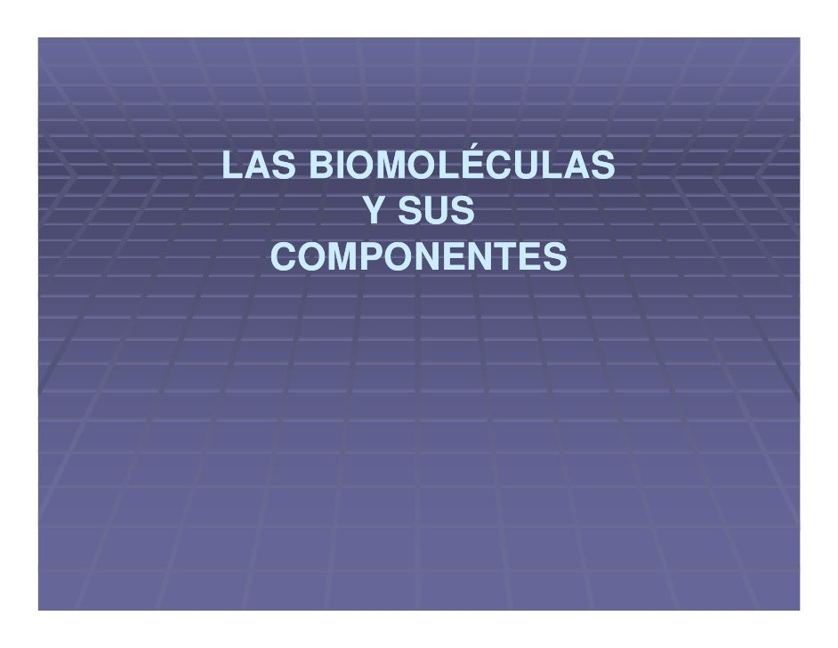 LAS BIOMOLÉCULAS        Y SUS   COMPONENTES