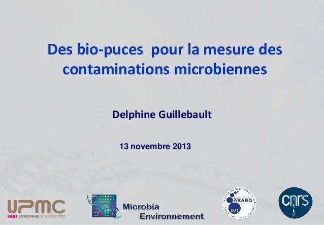 Des bio-puces pour la mesure des contaminations microbiennes Delphine Guillebault 13 novembre 2013