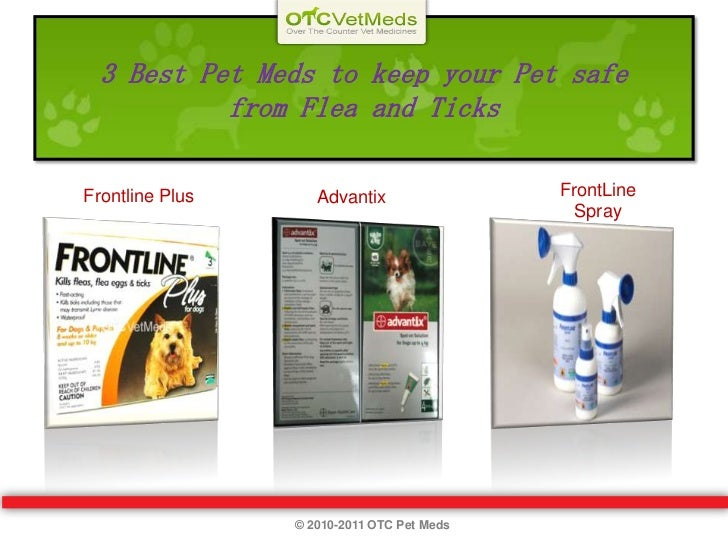 3 Best Pet Meds to keep your Pet safe from Flea and Ticks<br />FrontLine Spray<br />  Frontline Plus<br />Advantix<br />© ...