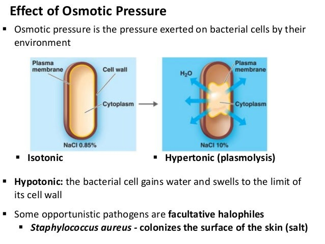 Effect of Osmotic Pres...