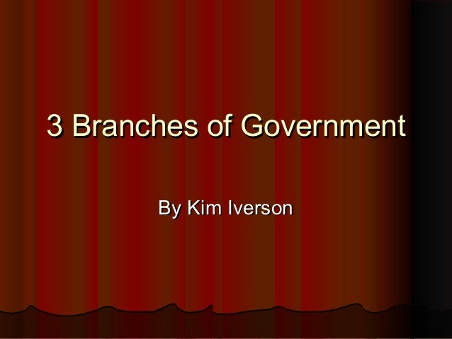 3 Branches of Government By Kim Iverson