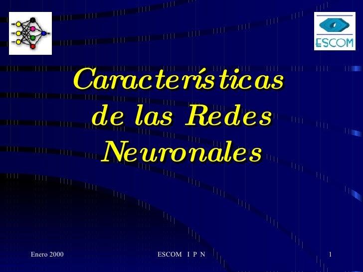 Características de las Redes Neuronales