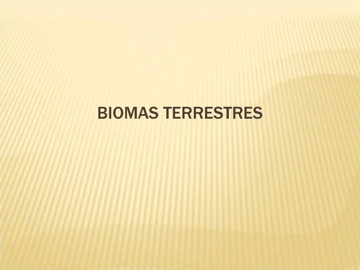 3 Cc Pp6 Biomas Compacto (Nx Power Lite)