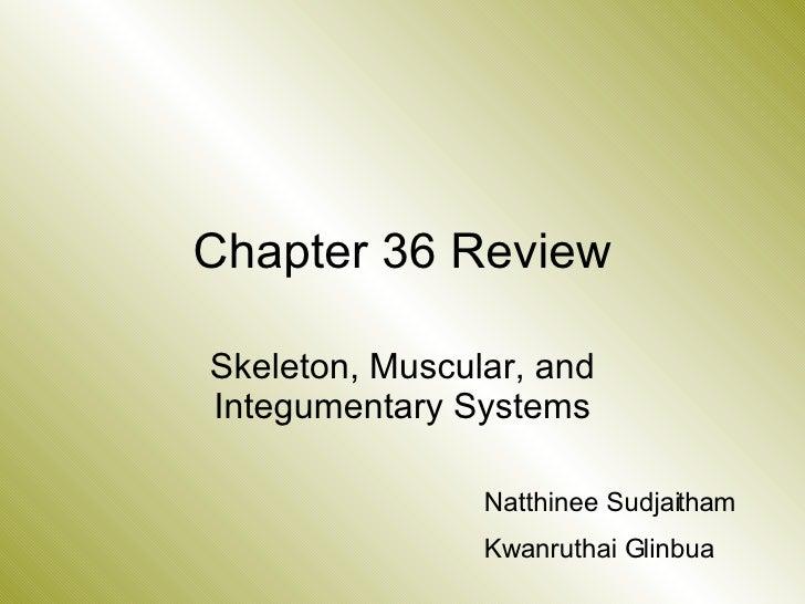 Chapter 36 Review Skeleton, Muscular, and Integumentary Systems Natthinee Sudjaitham Kwanruthai Glinbua