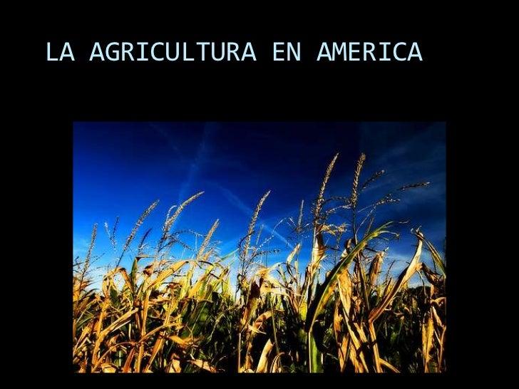 LA AGRICULTURA EN AMERICA<br />