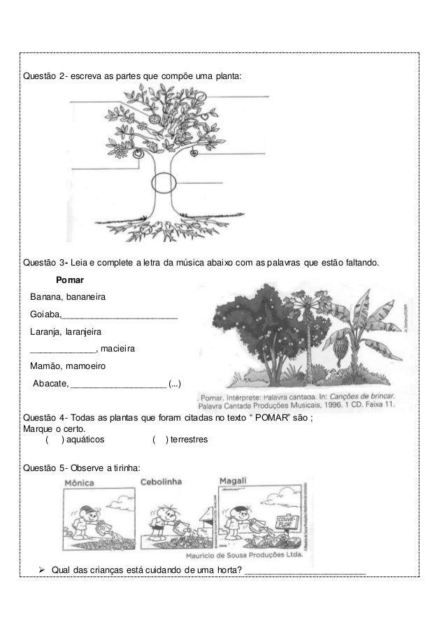 horta pomar e jardim atividadesAtividades avaliativas para o 2º ano
