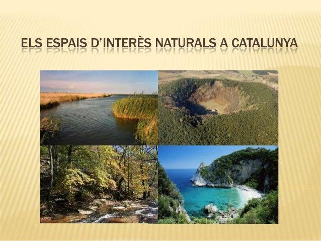ELS ESPAIS D'INTERÈS NATURALS A CATALUNYA