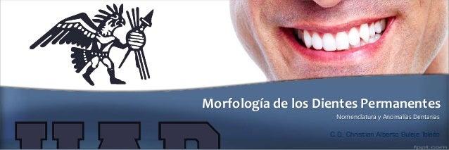 Morfología de los Dientes Permanentes Nomenclatura y Anomalías Dentarias C.D. Christian Alberto Buleje Toledo