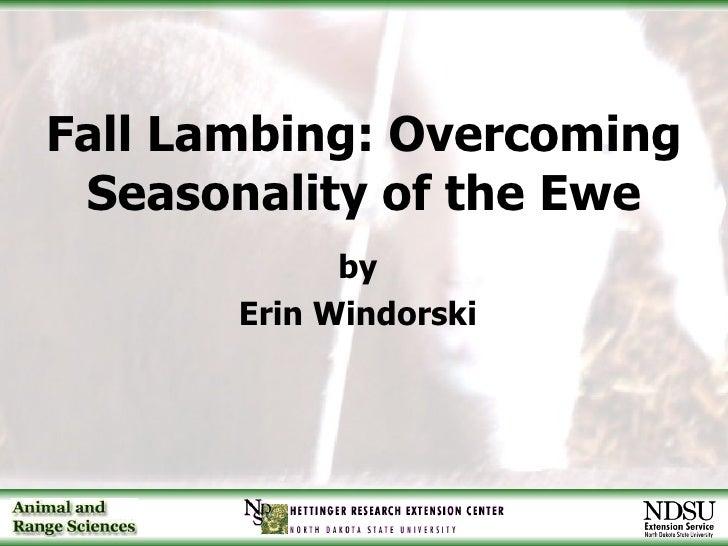 Fall Lambing: Overcoming Seasonality of the Ewe <ul><li>by </li></ul><ul><li>Erin Windorski </li></ul>