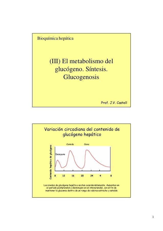 Bioquímica hepática            (III) El metabolismo del               glucógeno. Síntesis.                  Glucogenosis  ...