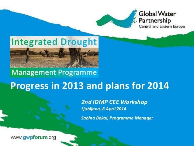 Progress in 2013 and plans for 2014 Sabina Bokal, Programme Manager 2nd IDMP CEE Workshop Ljubljana, 8 April 2014