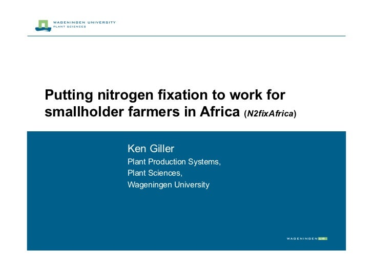 Putting nitrogen fixation to work for smallholder farmers in Africa (N2fixAfrica)                Ken Giller               ...