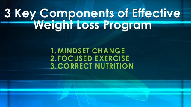 3 Key Components of Effective Weight Loss Program