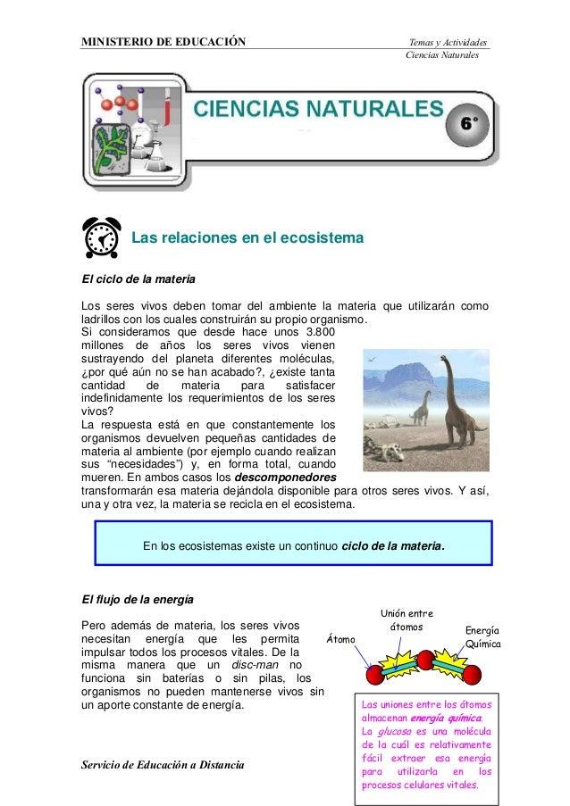 MINISTERIO DE EDUCACIÓN Temas y Actividades Ciencias Naturales Servicio de Educación a Distancia 1 Las uniones entre los á...