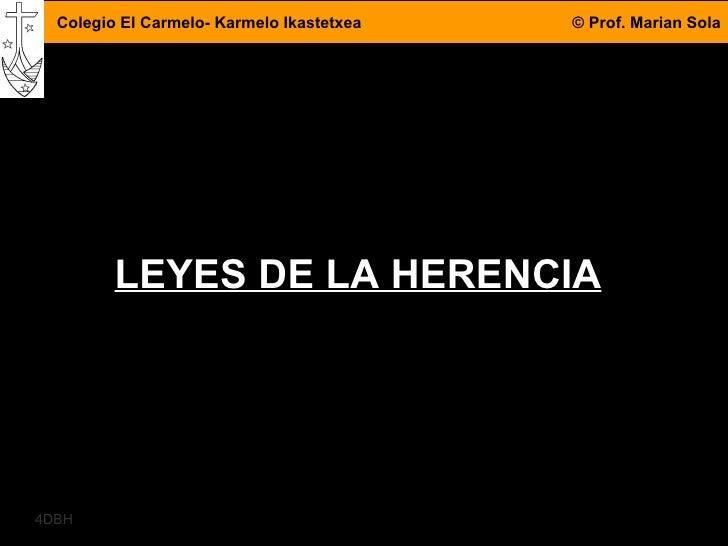 LEYES DE LA HERENCIA