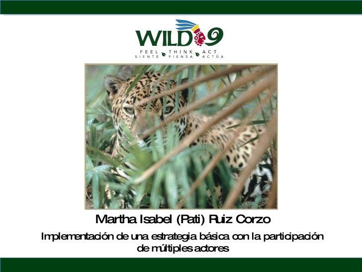 Martha Isabel (Pati) Ruiz Corzo Implementaci ón de una estrategia básica con la participación de múltiples actores