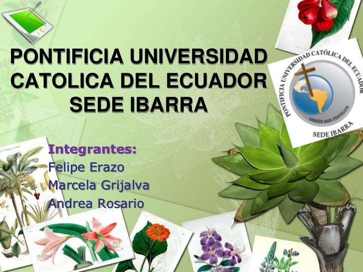PONTIFICIA UNIVERSIDAD CATOLICA DEL ECUADORSEDE IBARRA<br />Integrantes:<br />Felipe Erazo<br />Marcela Grijalva<br />Andr...