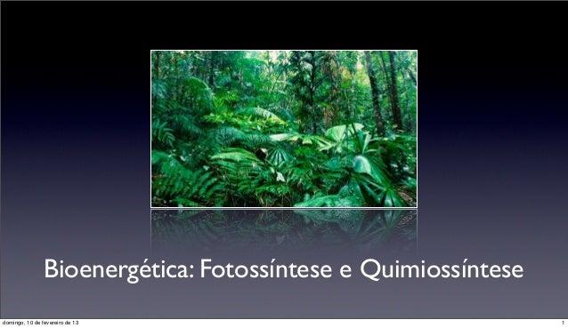 Bioenergética: Fotossíntese e Quimiossíntesedomingo, 10 de fevereiro de 13                                 1