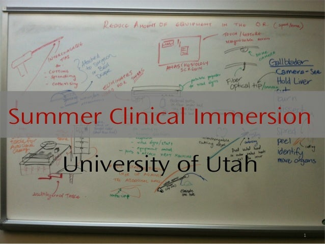 Summer Clinical Immersion    University of Utah                         1
