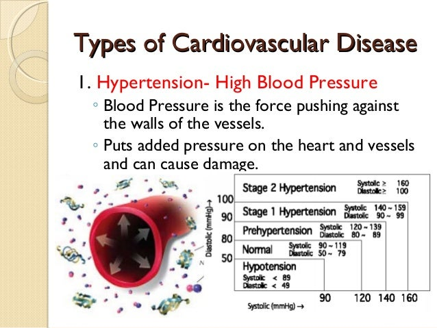 cardiovascular diseases essay Other common cardiovascular diseases include high blood pressure, stroke, angina, and rheumatic heart disease a majority of cardiovascular diseases occur due to buildup.