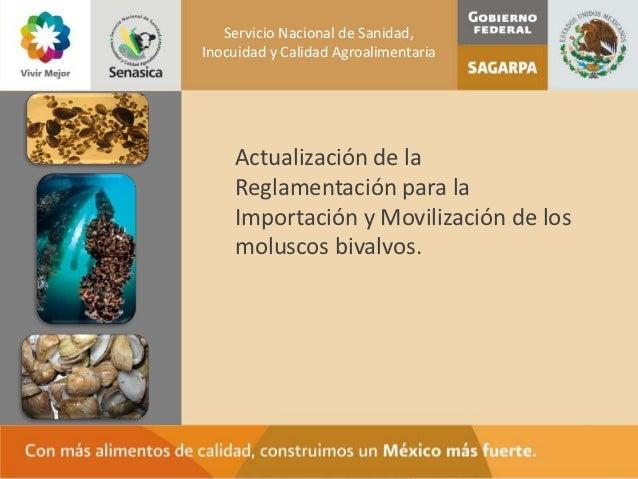 Servicio Nacional de Sanidad,Inocuidad y Calidad Agroalimentaria    Actualización de la    Reglamentación para la    Impor...