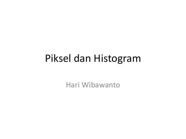 Piksel dan Histogram Hari Wibawanto