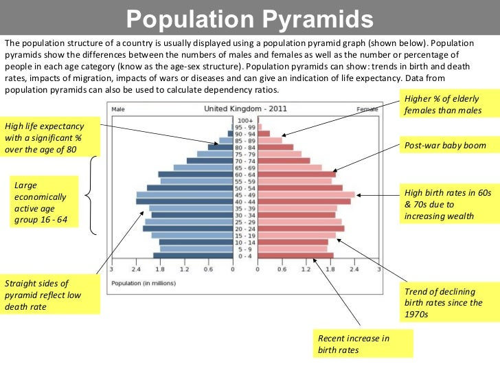 an essay on population summary