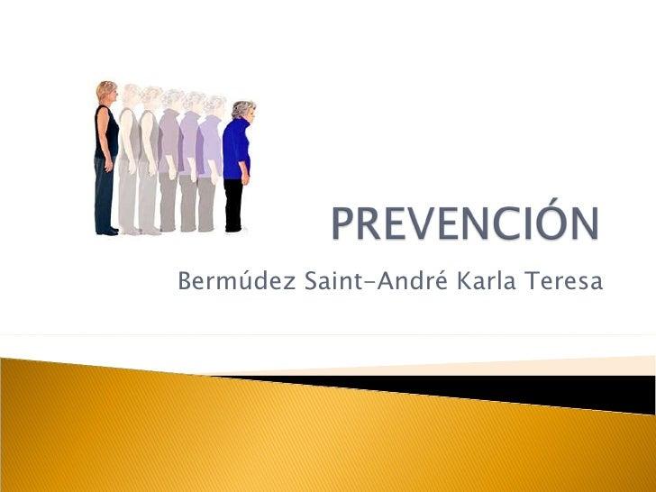 Bermúdez Saint-André Karla Teresa