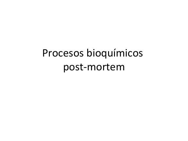Procesos bioquímicos post-mortem