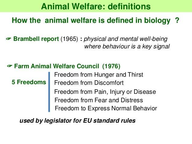 concept of welfare state pdf
