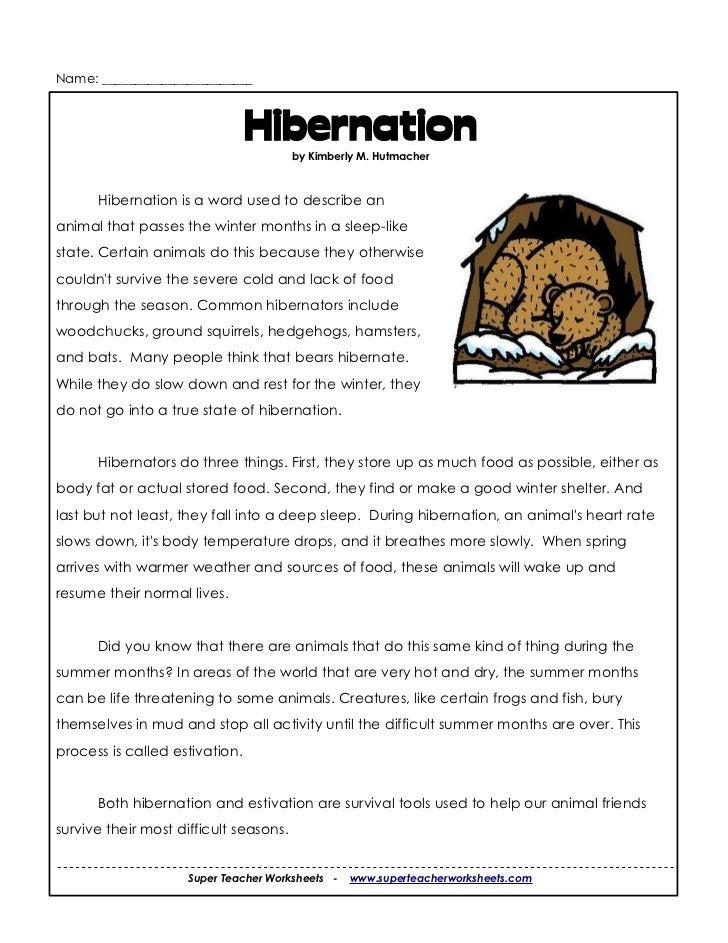 Hibernation Worksheets For 2nd Grade 3rd hibernation