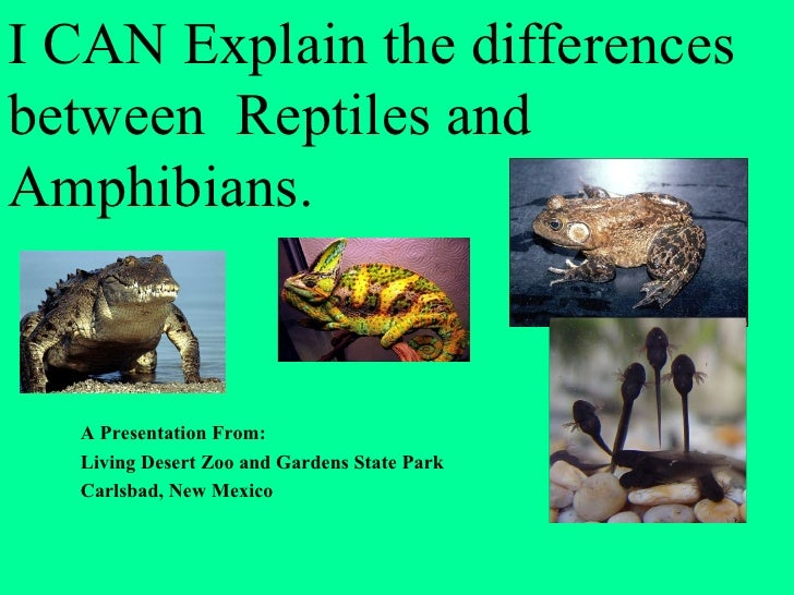 I CAN Explain the differencesbetween Reptiles andAmphibians.  A Presentation From:  Living Desert Zoo and Gardens State Pa...