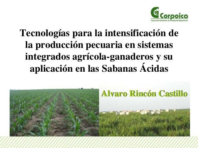 Tecnologías para la intensificación de la producción pecuaria en sistemas integrados agrícola-ganaderos y su aplicación en...