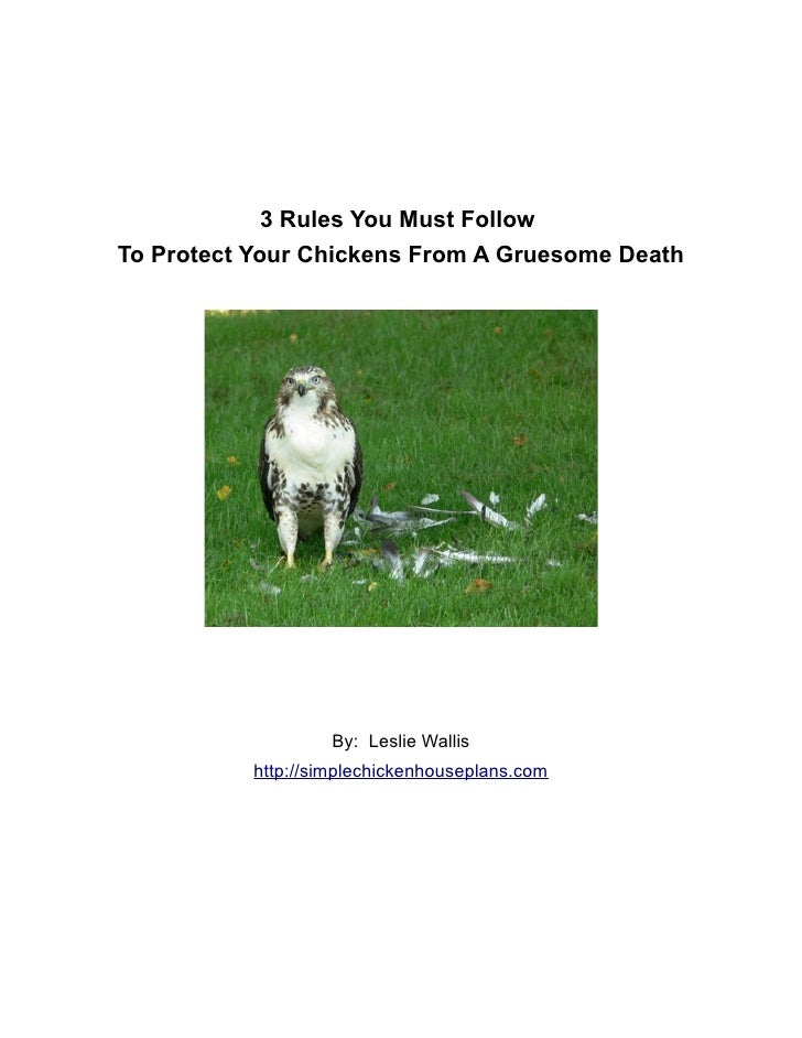 3 Rules You Must Follow To Protect Your Chickens From A Gruesome Death                         By: Leslie Wallis          ...