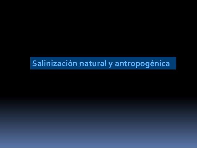 Salinización natural y antropogénica