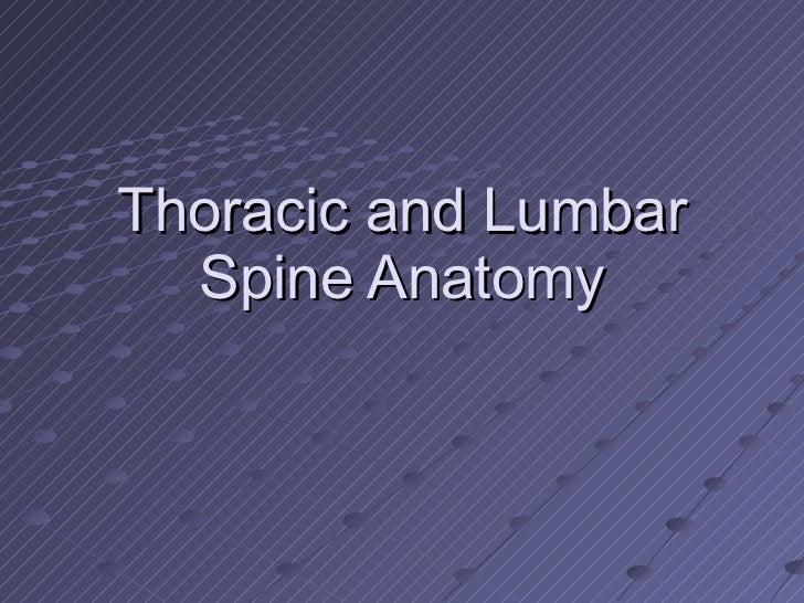 Thoracic and Lumbar Spine Anatomy