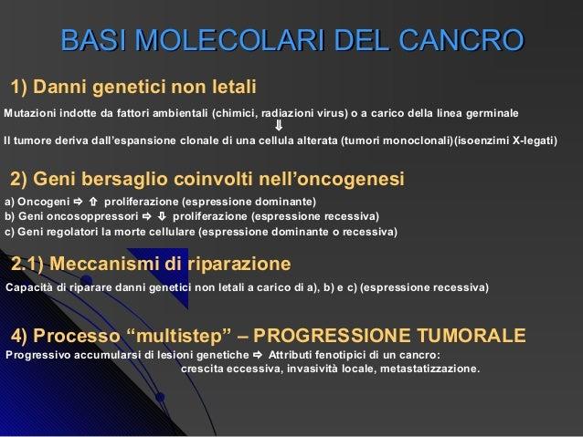 BASI MOLECOLARI DEL CANCRO 1) Danni genetici non letaliMutazioni indotte da fattori ambientali (chimici, radiazioni virus)...