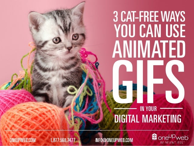 1.877.568.7477ONEUPWEB.COM INFO@ONEUPWEB.COM IN YOUR DIGITAL MARKETING ANIMATED YOU CAN USE 3 CAT-FREEWAYS