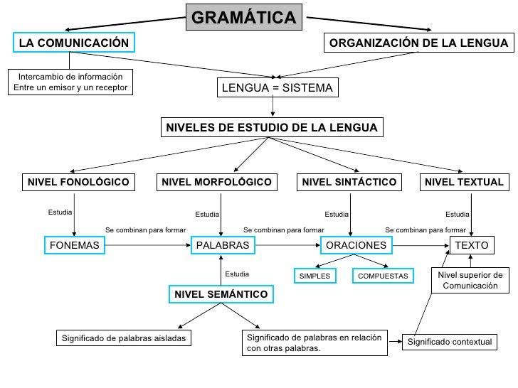 GRAMÁTICA LA COMUNICACIÓN ORGANIZACIÓN DE LA LENGUA NIVELES DE ESTUDIO DE LA LENGUA NIVEL FONOLÓGICO NIVEL MORFOLÓGICO NIV...